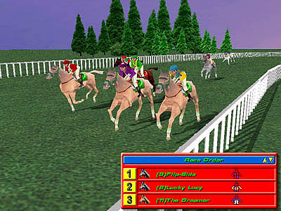 3D Horse racing simulation.